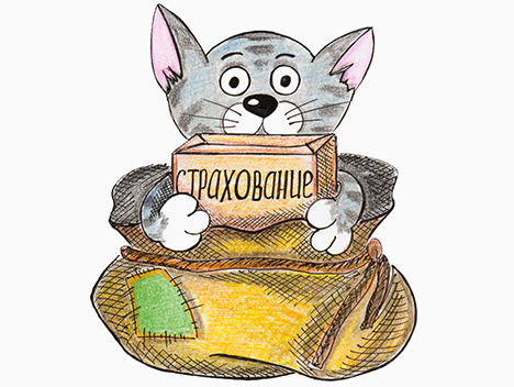 «Коробочное» страхование – кот в мешке? - «Видео»