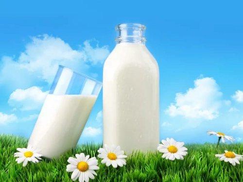 Россельхознадзор: российская «молочка» и свинина вредны для здоровья - «Финансы»