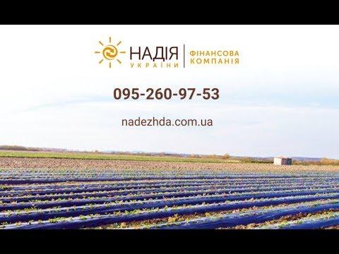 """Финансовая компания """"Надежда Украины"""". Кредит - это возможность воплотить мечту!   - «Видео - Простобанка Консалтинга»"""