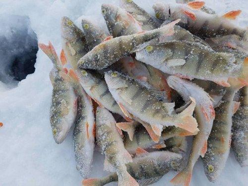 Бег, рыбалка, лыжи и боулинг, или как банкиры провели новогодние праздники - «Новости Банков»