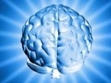 Ученые из США успешно испытали протез памяти - «Новости Банков»