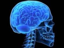 Искусственный костный мозг начнет бороться с болезнями крови - «Новости Банков»