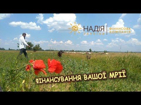 """Финансовая компания """"Надежда Украины"""" - кредитование производителей сельскохозяйственной продукции   - «Видео - Простобанка Консалтинга»"""