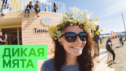 Дикая мята 2018  - «Видео - Тинькофф Банка»