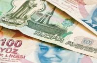 Заразная валюта: почему в Турции сжигают доллары, а «горит» рубль - «Финансы»