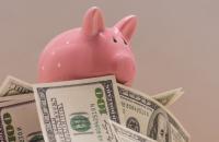 Эффект хомяка, или Тормоз для кредитов - «Финансы»