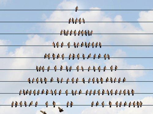 На вершине пирамиды: почему россияне не хотят расставаться с «Кэшбери» - «Тема дня»