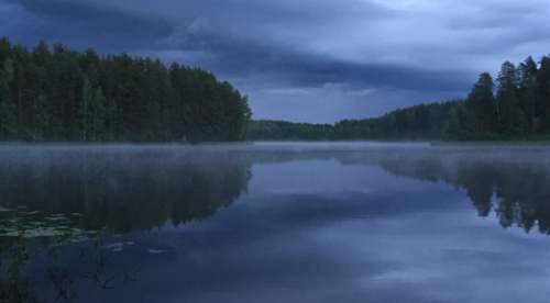 В Новикомбанке выбрали лучшие летние фотографии - «Новикомбанк»