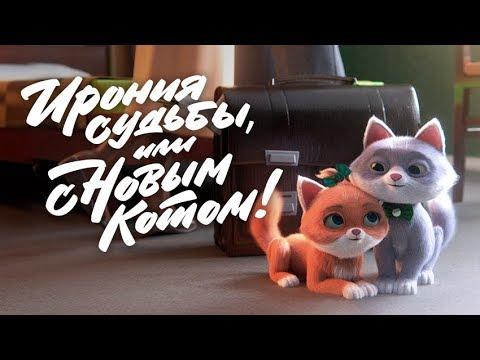 Ирония судьбы, или С новым котом!  - «Видео - Сбербанк»