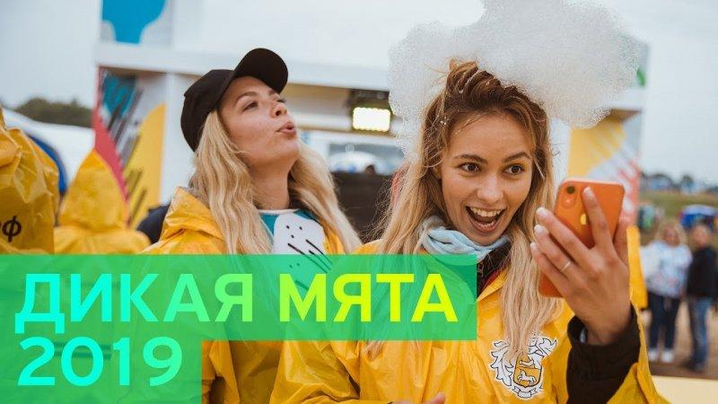 Дикая Мята x Тинькофф - «Видео - Тинькофф Банка»