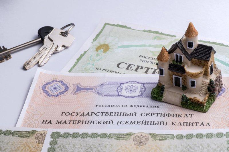 Материнский капитал можно будет использовать для взноса по сельской ипотеке - «Финансы и Банки»